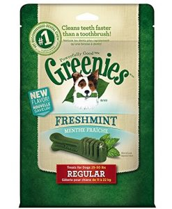 Greenies Freshmint Dental Chews Treat Pack for Medium Dogs - Weight Control Dog Treats