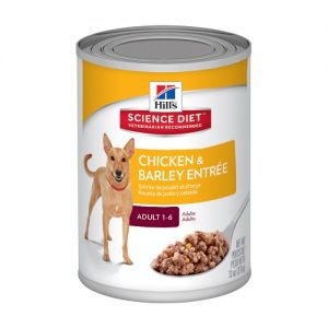 Best Dog Food In Australia