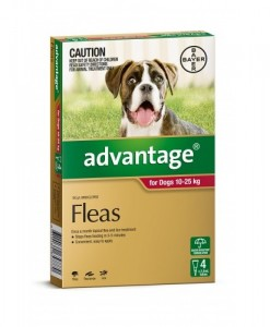 Advantage for Large Dogs 10-25 kg - All Natural Dog Food