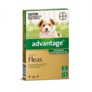 Advantage for Small Dogs up to 4 kg - Pet Shop Online Australia