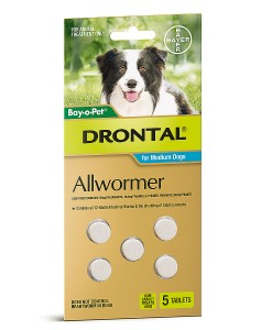 Drontal Allwormer Tablets for Medium Dogs - Pet Shop Online Australia