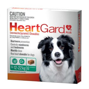 HeartGard 6 Pack Green 12-22kg - Best Online Pet Store