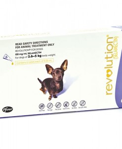 Revolution for Very Small Dogs - The Best Pet Shop Australia