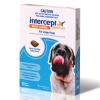 Interceptor large dog - Best All Natural Dog Food